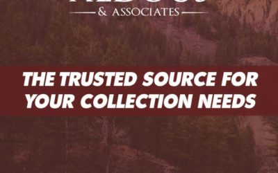 The Source For Your Collections Needs